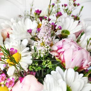 Букет 9 пионов с ромашками, хамелациум и хризантемой