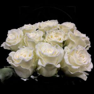 Сахарные розы сорт Apple Dhuez