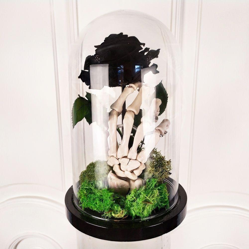 Роза в колбе со скелетом (для А. Невзорова)