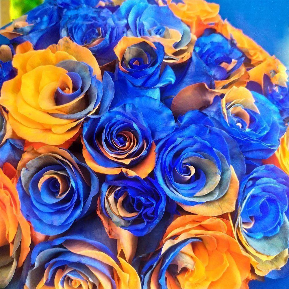 Букет 25 сине-рыжих роз (для Pegas Touristik)