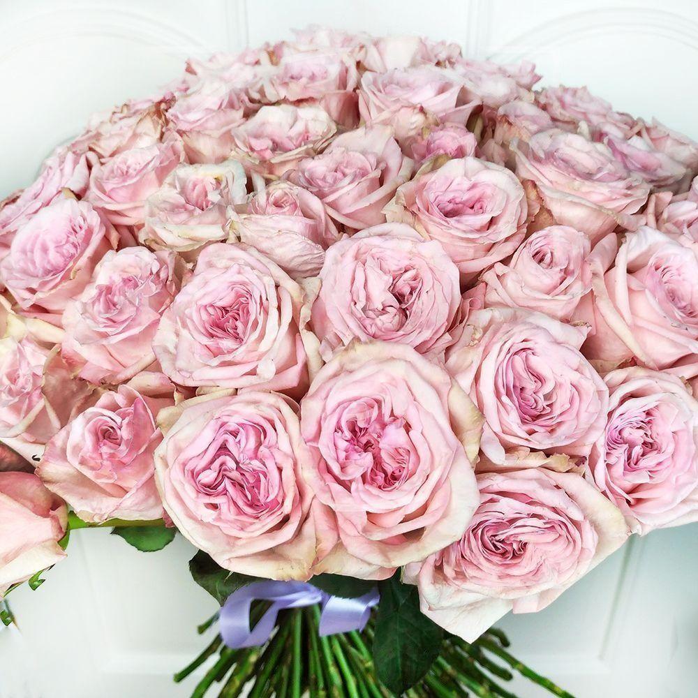 Букет 101 пионовидная ароматная роза Пинк Охара (Pink Ohara)