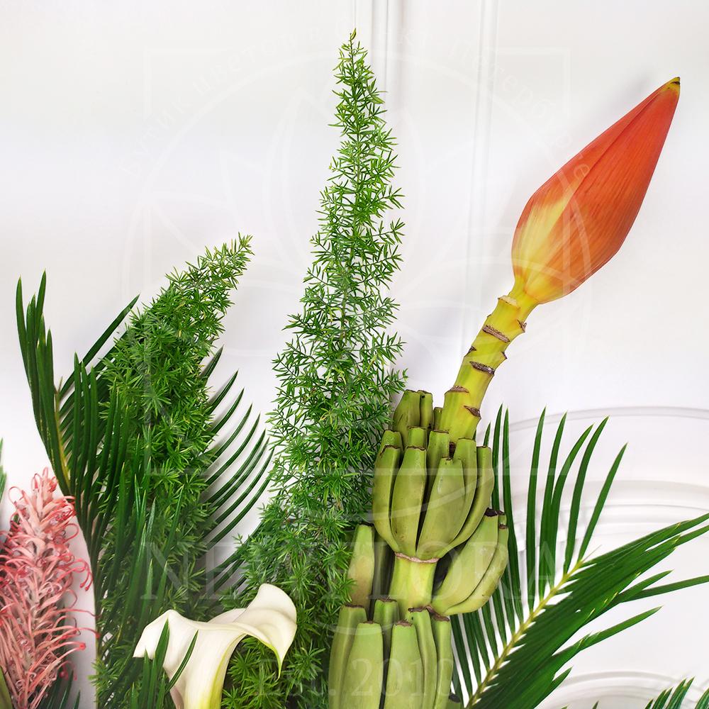 Экзотический букет 3 протеи с цветком банана, каллами, нутаном и зеленью