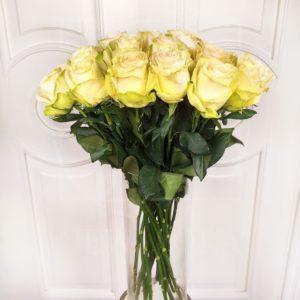 Букет 25 белых роз сорт Dynamic (Premium)
