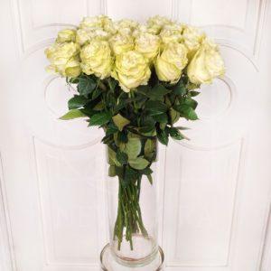 Букет 25 белых роз сорт Moonstone (Premium)