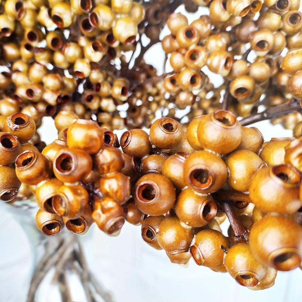 Эвкалипт тропический «gumnut» (сухоцвет)