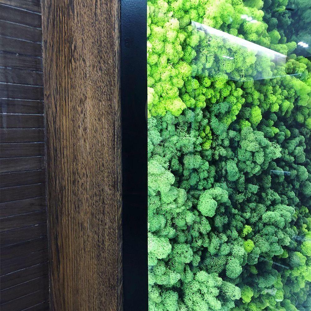 Панно из стабилизированного мха под стеклом с подсветкой 1800×1800