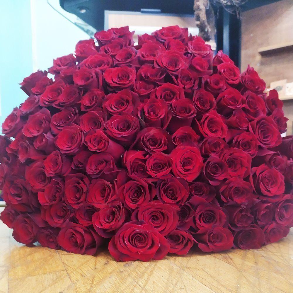 Букет 101 бордовая роза Explorer (80см) premium