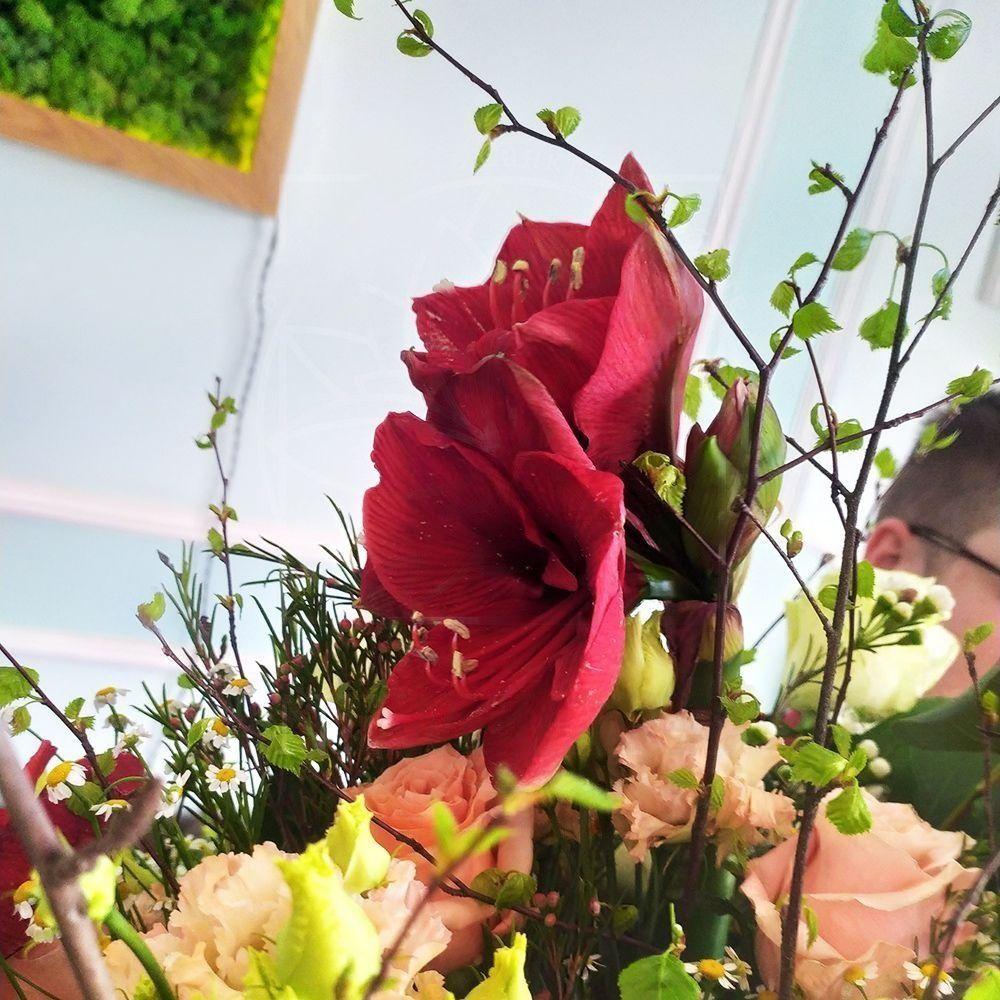 Букет 31 роза с ромашками, амариллисами и зеленью