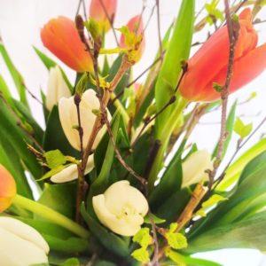 Букет 19 тюльпанов с веточками берёзы