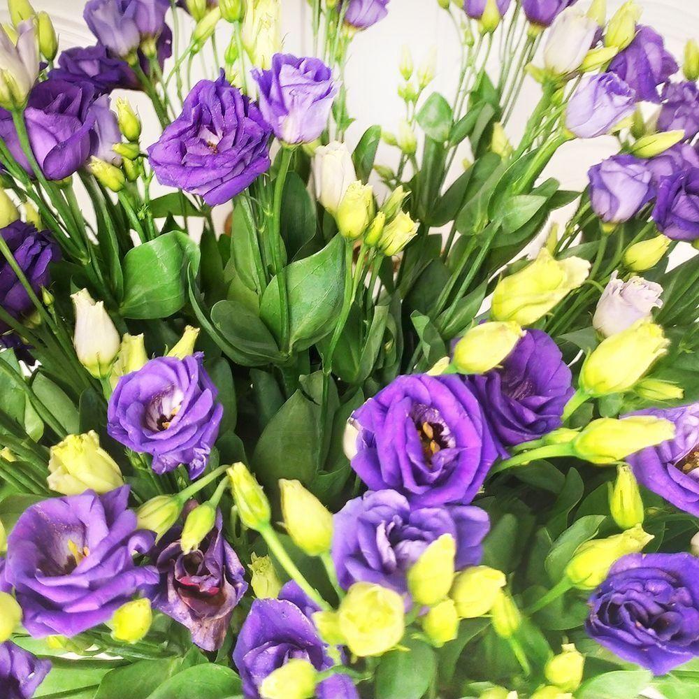 Букет 19 фиолетовых лизиантусов
