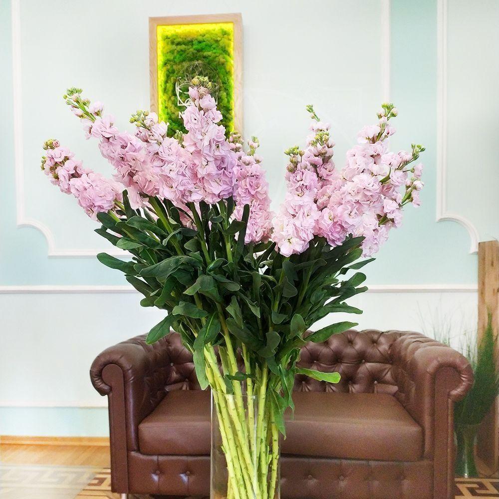 Букет 19 веток розовой маттиолы (110см)