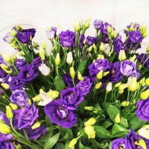 Букет 35 фиолетовых лизиантусов