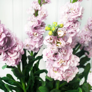 Букет 9 веток розовой маттиолы (110см)