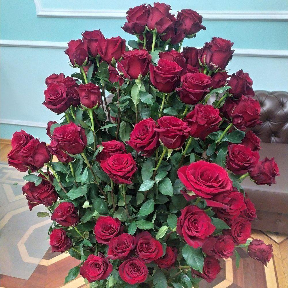Букет 101 красная роза (110-160см)