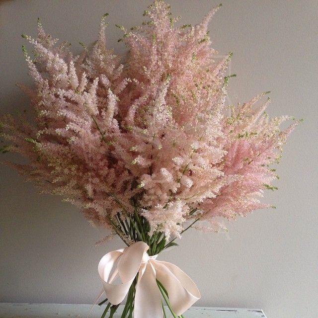 Букет 15 веток розовой астильбы