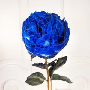 Большие отборные синие пионы (поштучно)