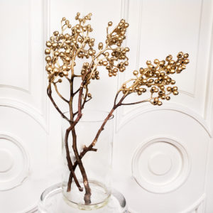Эвкалипт тропический «gumnut» золотой (сухоцвет)