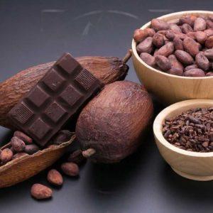 Набор 60 тарелочек из какао-бобов (тропический сухоцвет)