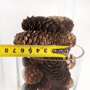 Шишки еловые (6-7см)