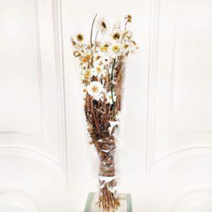 Акролиниум белый 50см (сухоцвет)