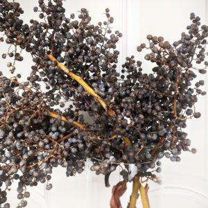 Ветка финиковой пальмы с плодами большая (сухоцвет)