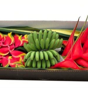Набор тропических цветов #3