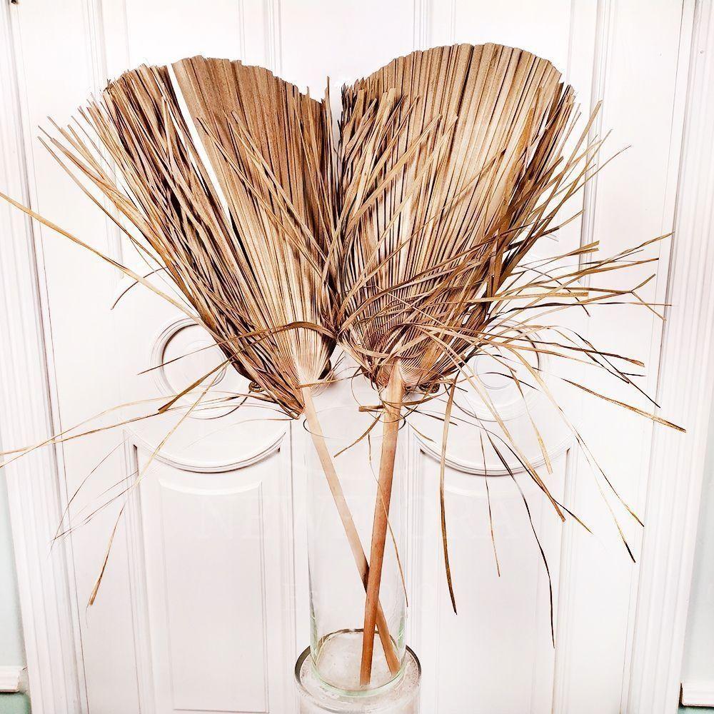Ветка пальмы «washingtonia round» 100см (поштучно)