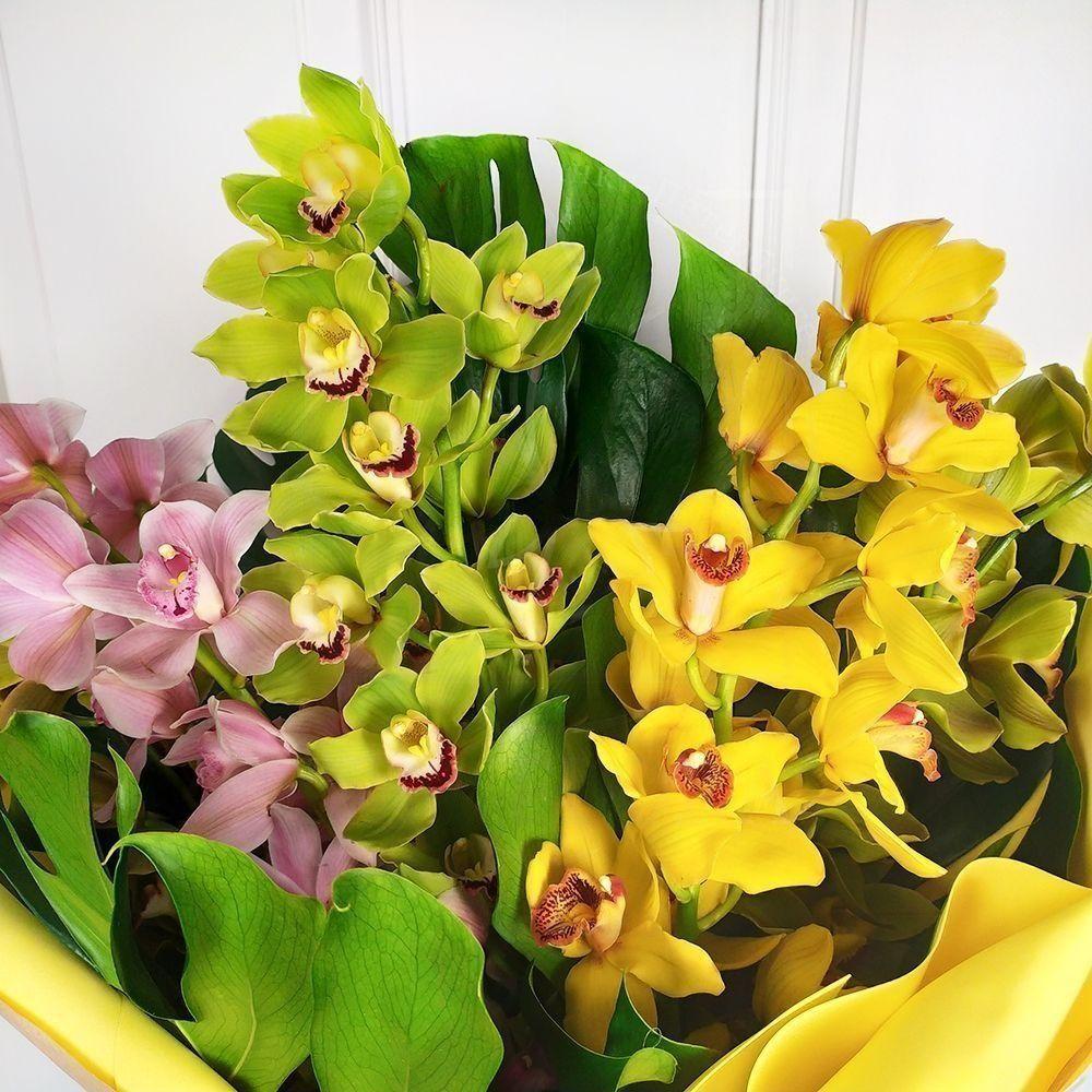 Букет орхидей цимбидиум 80см с монстерой XXL