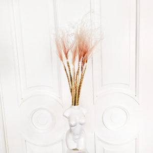 Стифа розовая 60см (сухоцвет)